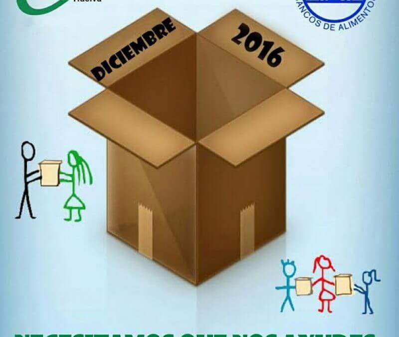 CSIF inicia una recogida de alimentos en su sede con motivo de su campaña solidaria por Navidad para el Banco de Alimentos